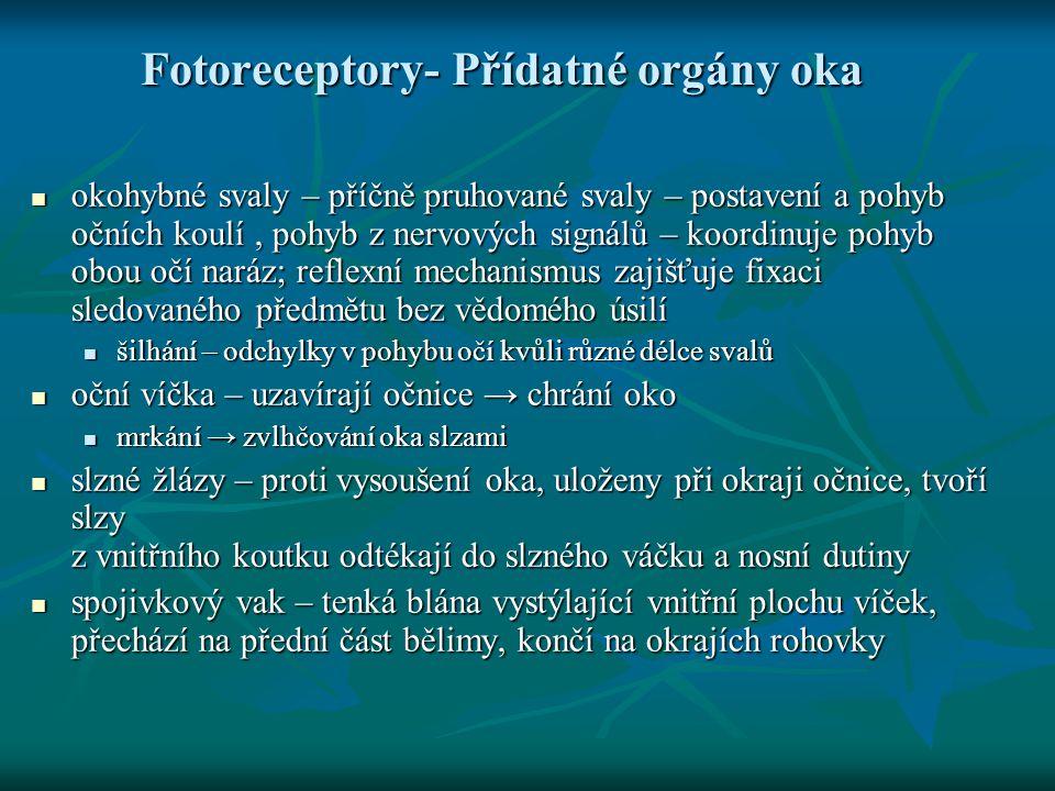 Fotoreceptory- Přídatné orgány oka