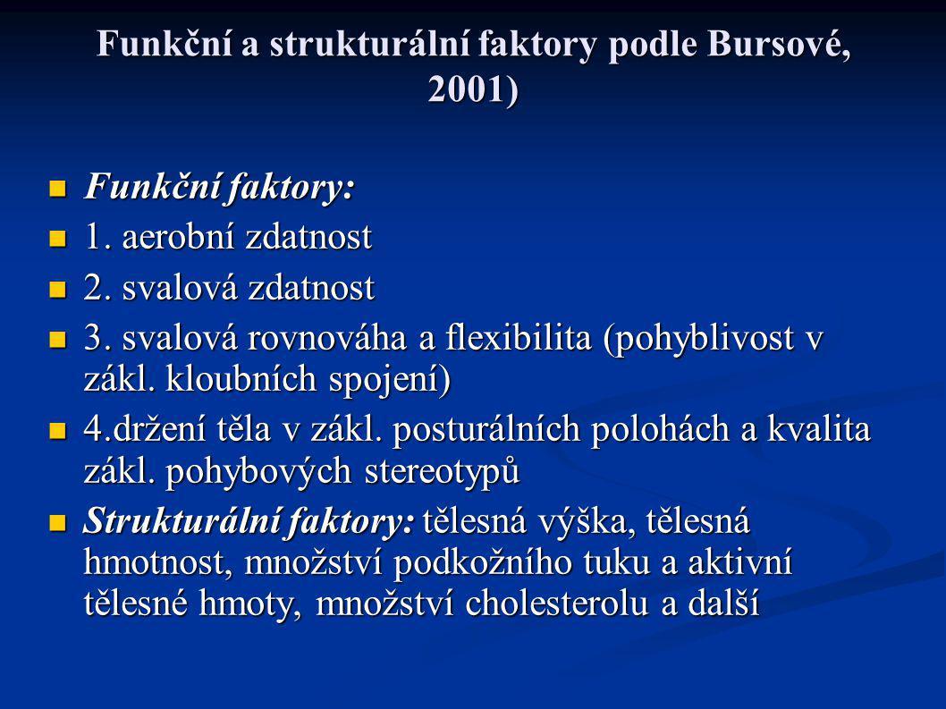 Funkční a strukturální faktory podle Bursové, 2001)