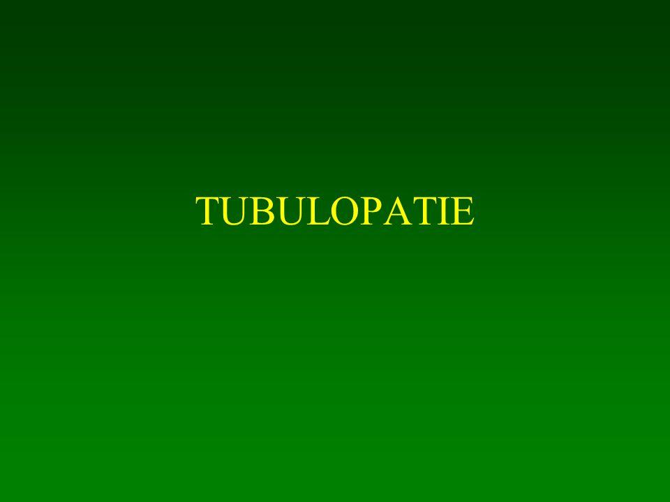 TUBULOPATIE