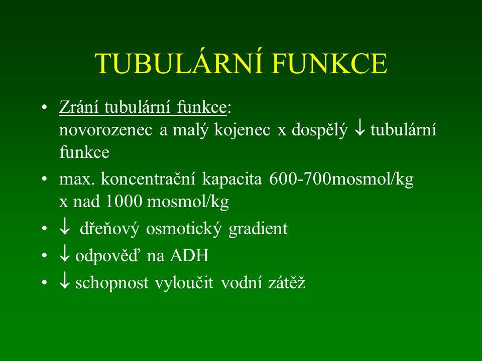 TUBULÁRNÍ FUNKCE Zrání tubulární funkce: novorozenec a malý kojenec x dospělý  tubulární funkce.
