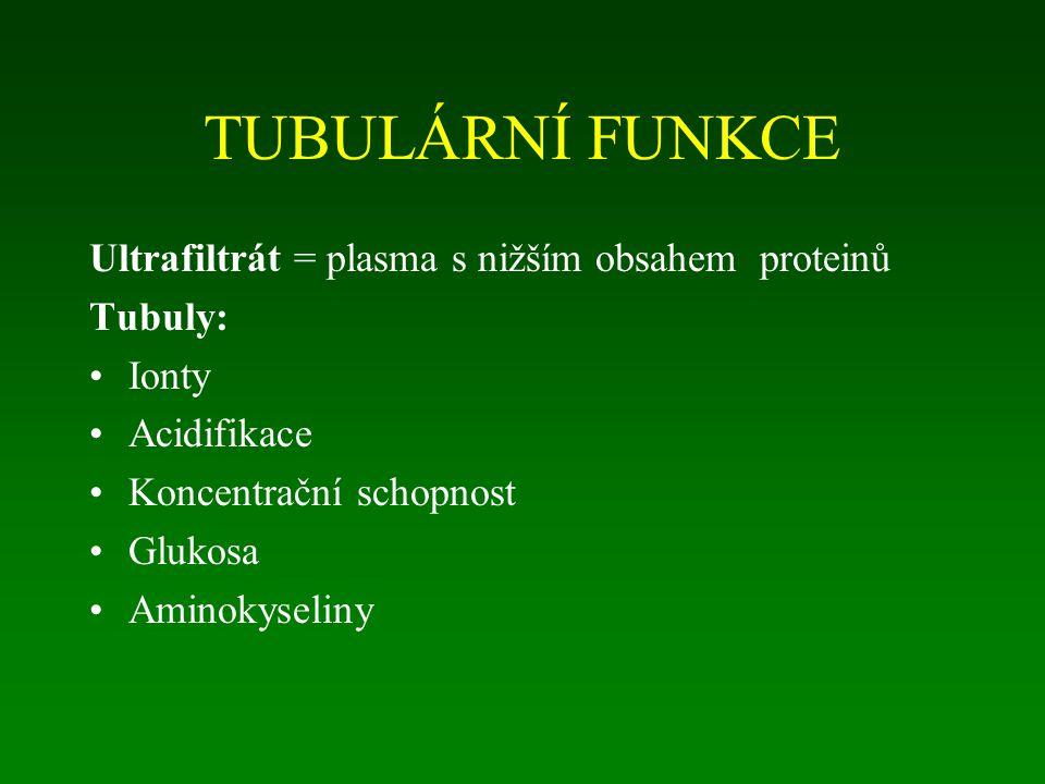 TUBULÁRNÍ FUNKCE Ultrafiltrát = plasma s nižším obsahem proteinů