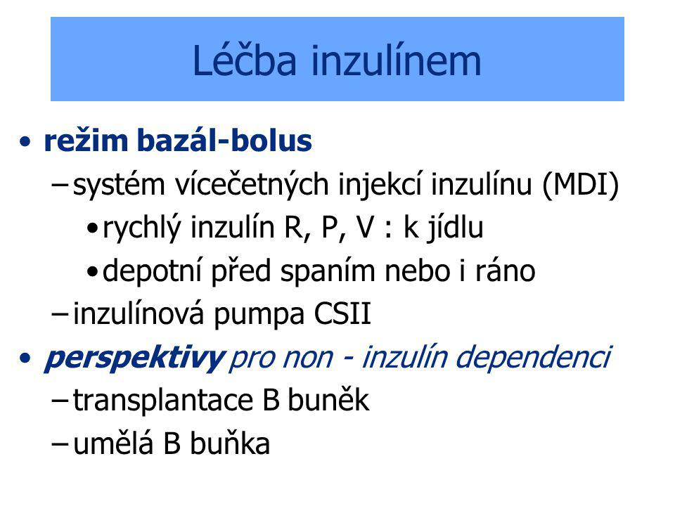 Léčba inzulínem režim bazál-bolus