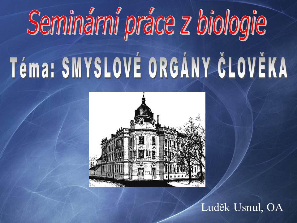 Seminární práce z biologie