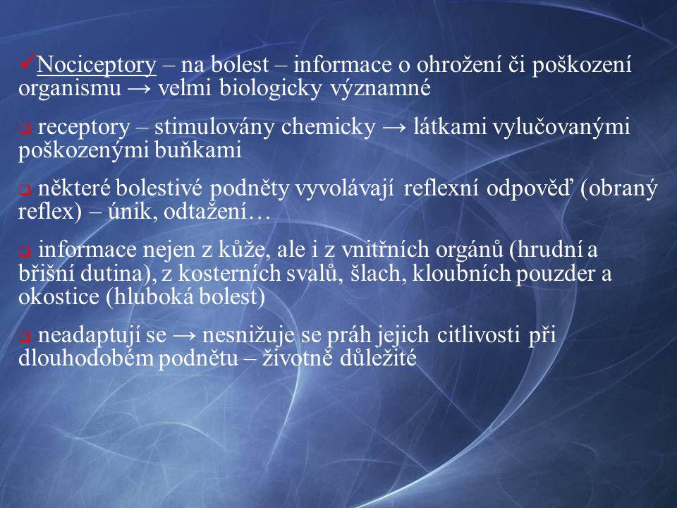 Nociceptory – na bolest – informace o ohrožení či poškození organismu → velmi biologicky významné