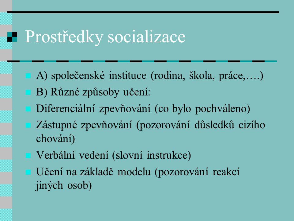 Prostředky socializace