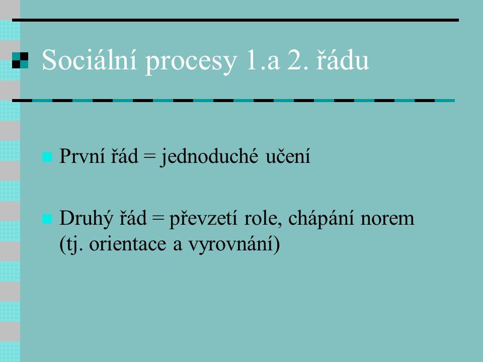 Sociální procesy 1.a 2. řádu