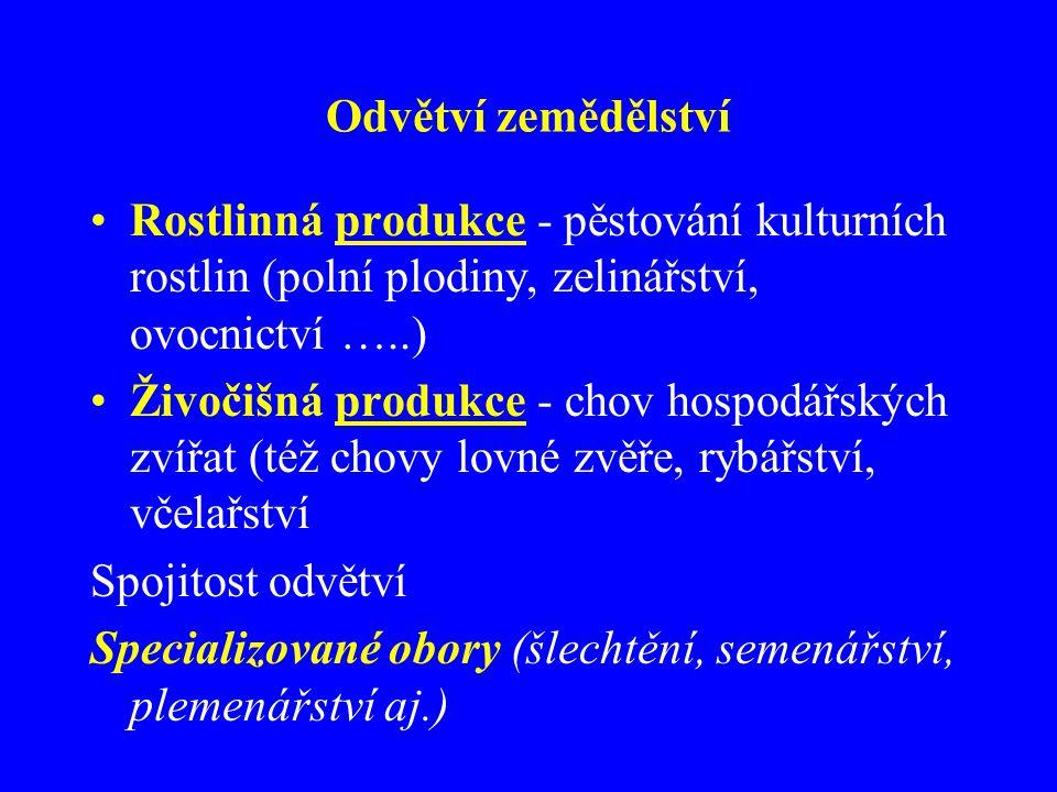 Odvětví zemědělství Rostlinná produkce - pěstování kulturních rostlin (polní plodiny, zelinářství, ovocnictví …..)