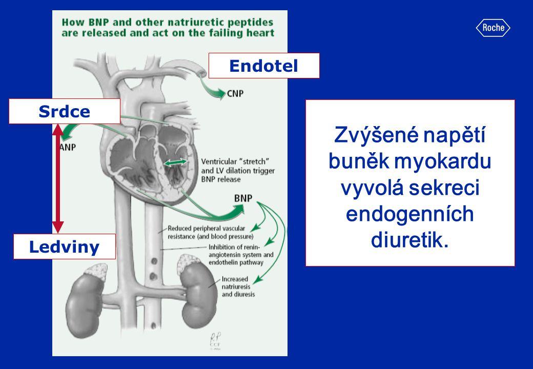 Zvýšené napětí buněk myokardu vyvolá sekreci endogenních diuretik.