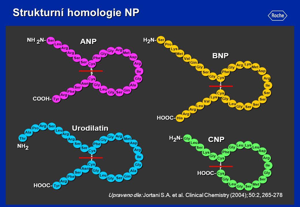 Strukturní homologie NP