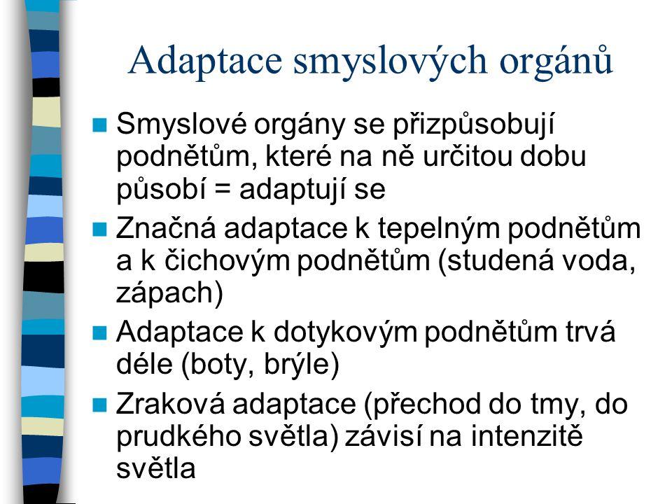 Adaptace smyslových orgánů