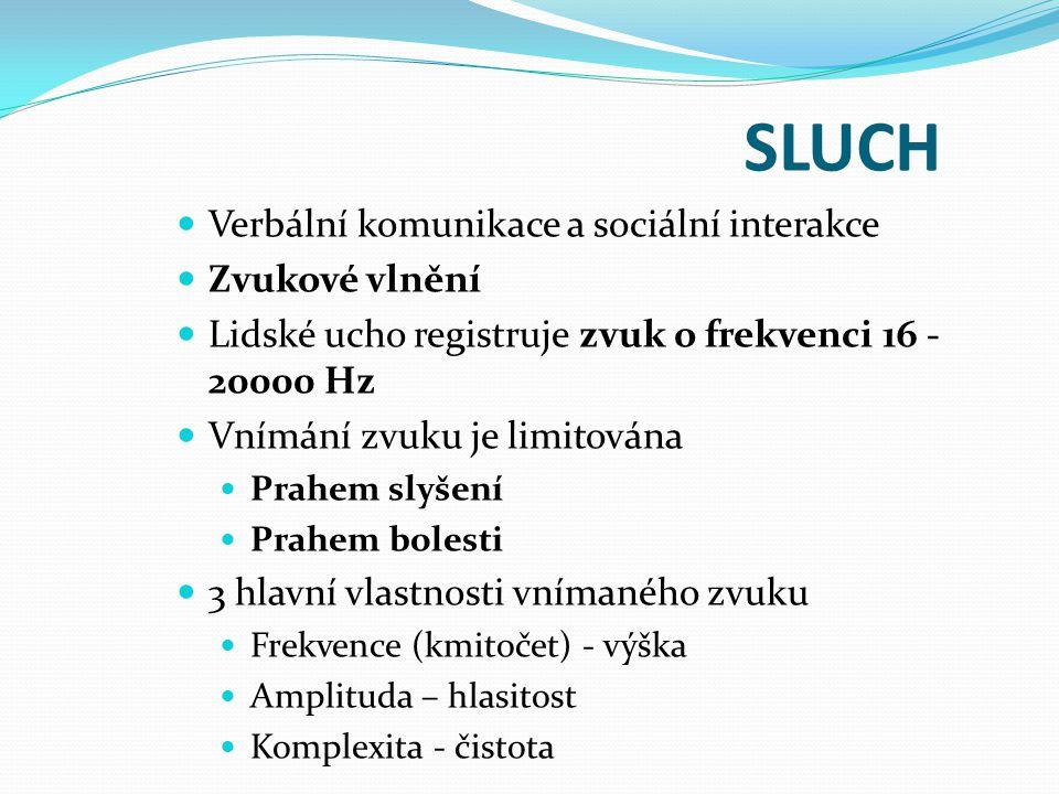 SLUCH Verbální komunikace a sociální interakce Zvukové vlnění