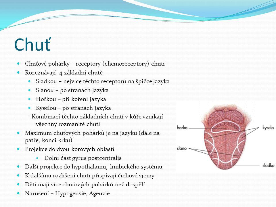 Chuť Chuťové pohárky – receptory (chemoreceptory) chuti
