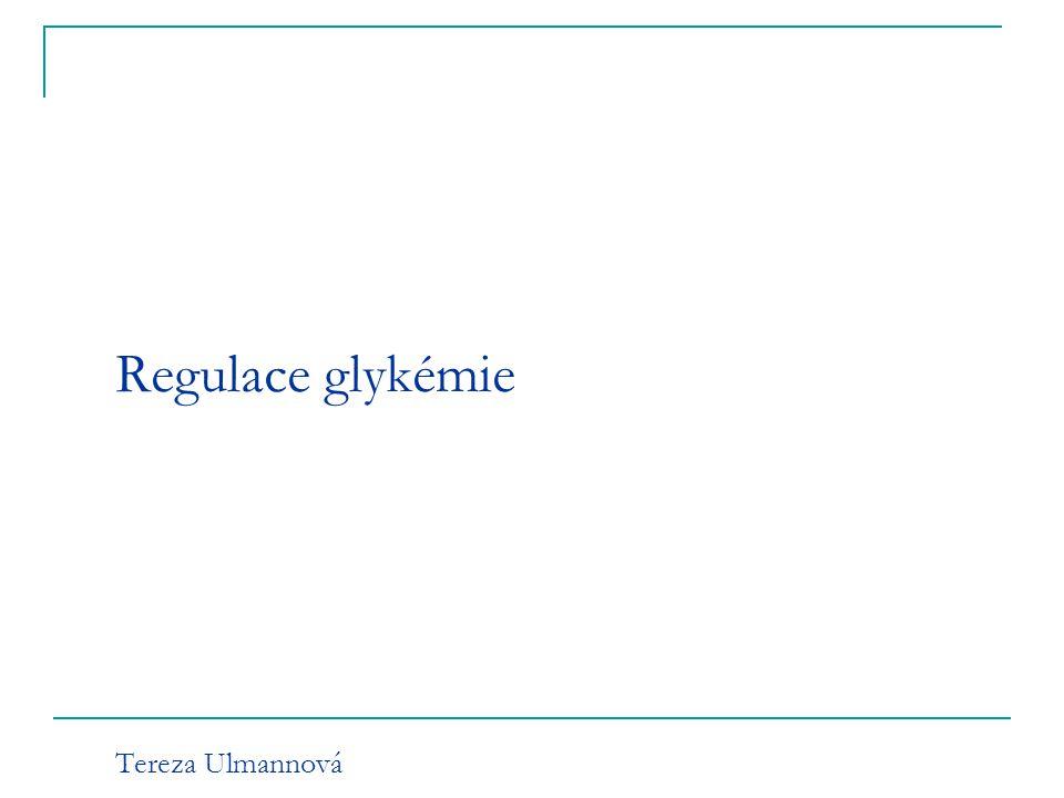 Regulace glykémie Tereza Ulmannová