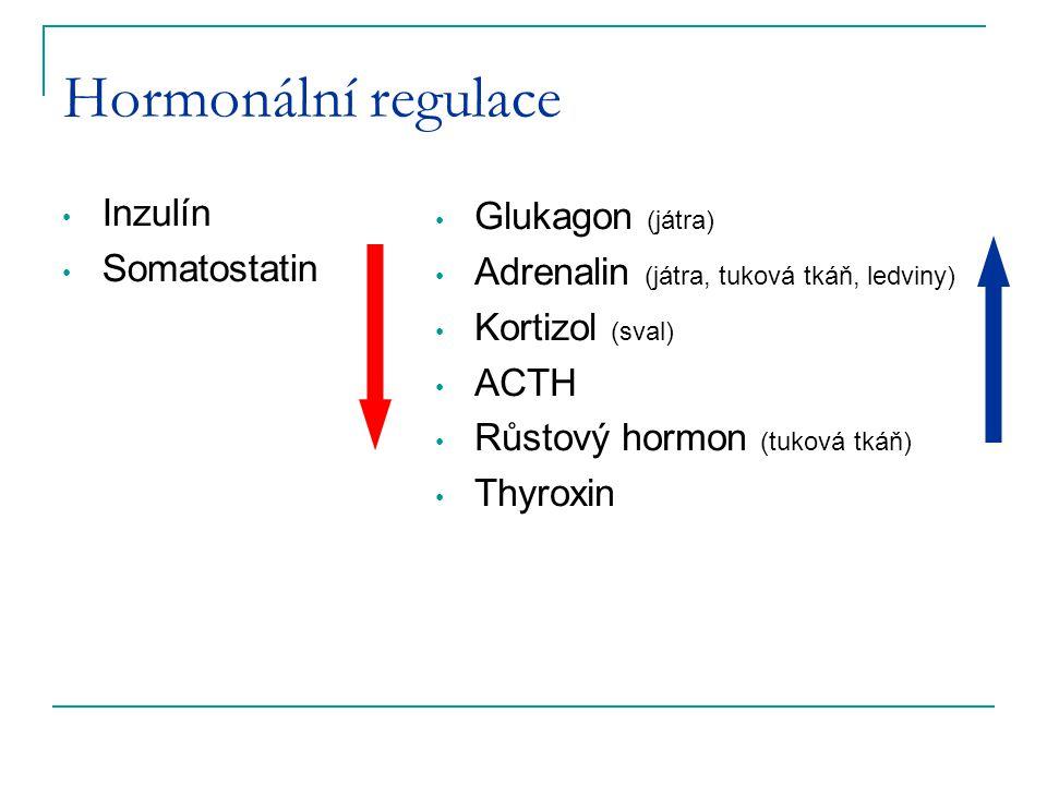 Hormonální regulace Inzulín Glukagon (játra) Somatostatin