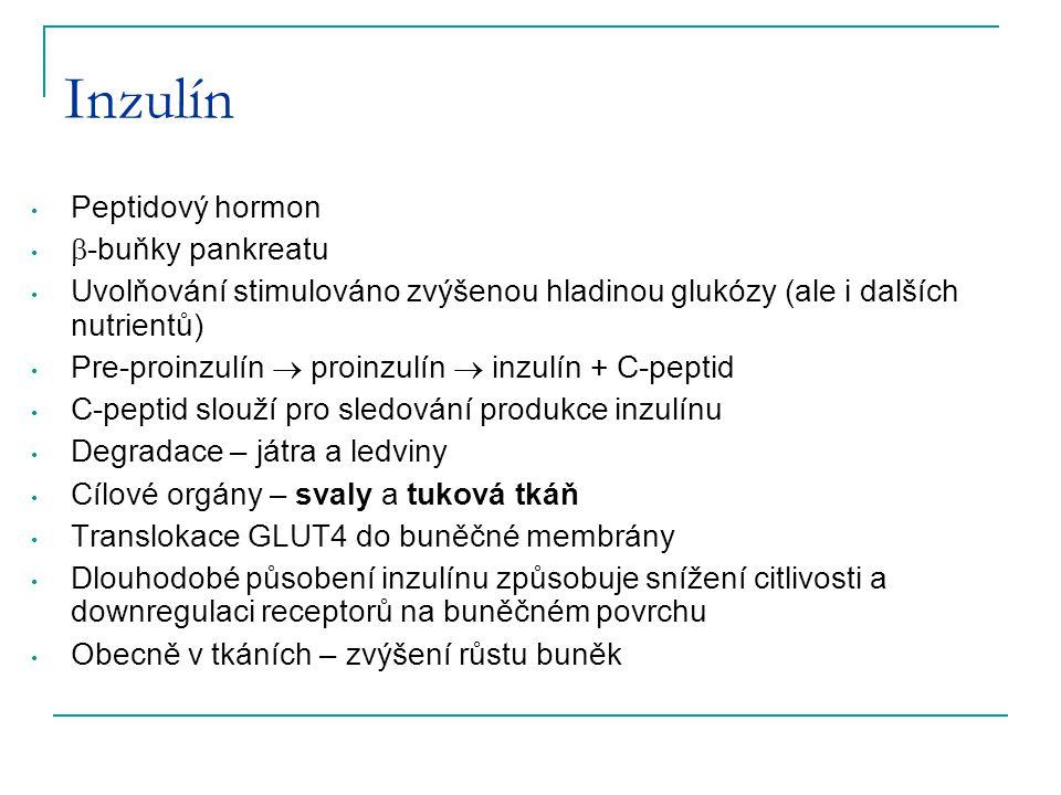 Inzulín Peptidový hormon -buňky pankreatu