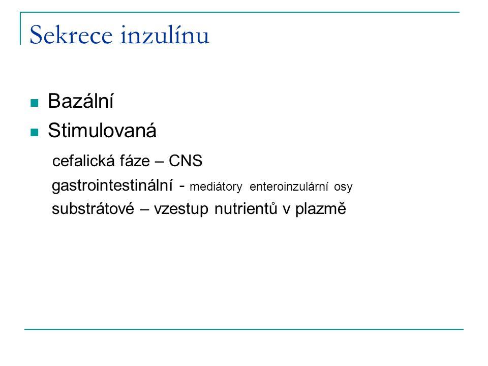 Sekrece inzulínu Bazální Stimulovaná cefalická fáze – CNS