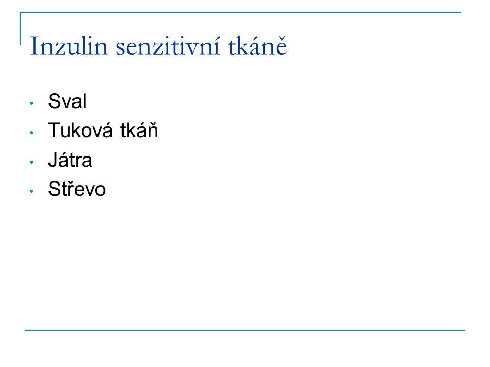 Inzulin senzitivní tkáně