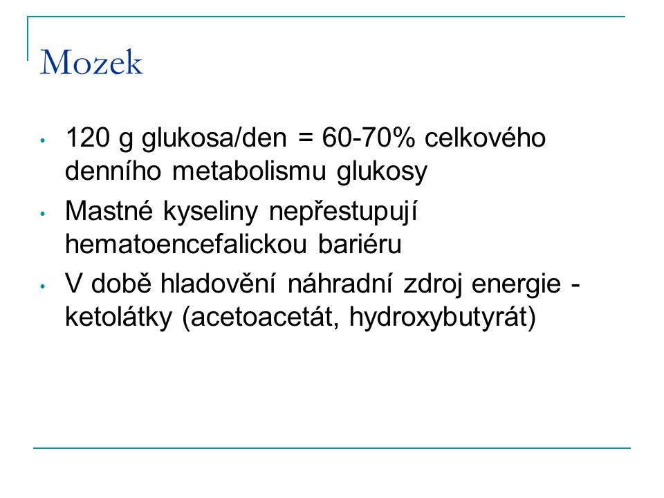 Mozek 120 g glukosa/den = 60-70% celkového denního metabolismu glukosy