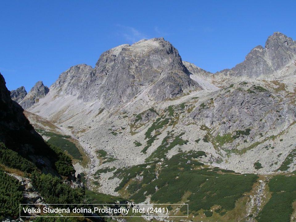 Velká Studená dolina,Prostredný hrot (2441)
