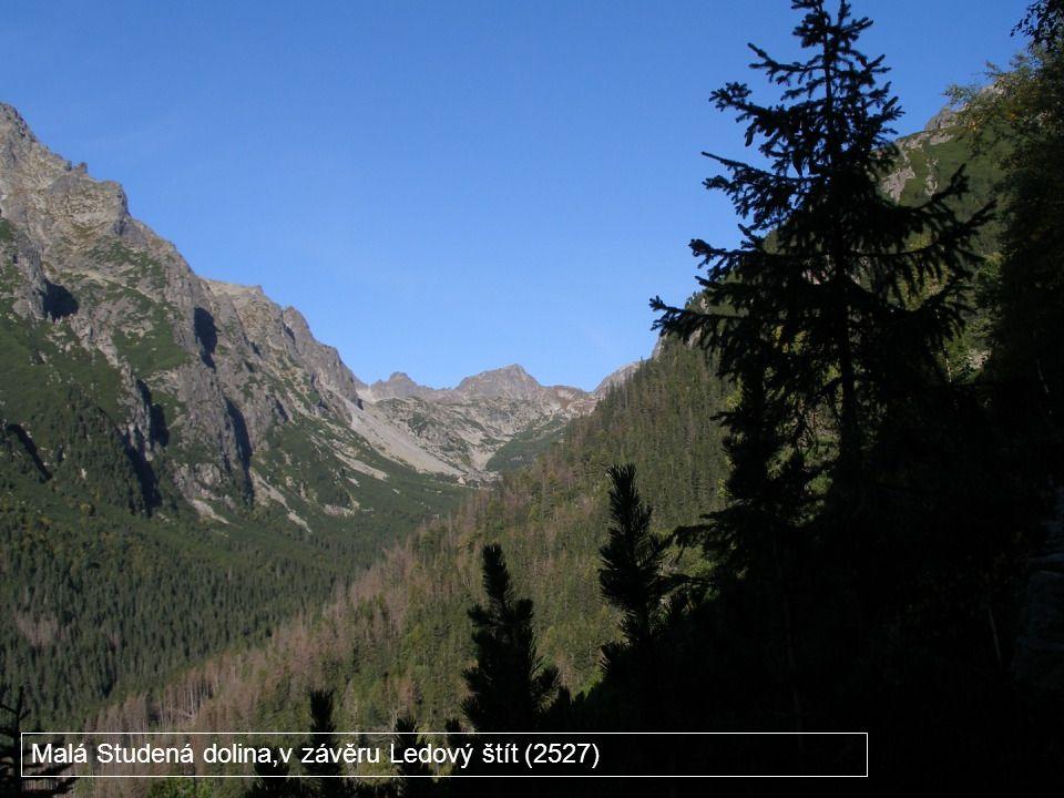 Malá Studená dolina,v závěru Ledový štít (2527)