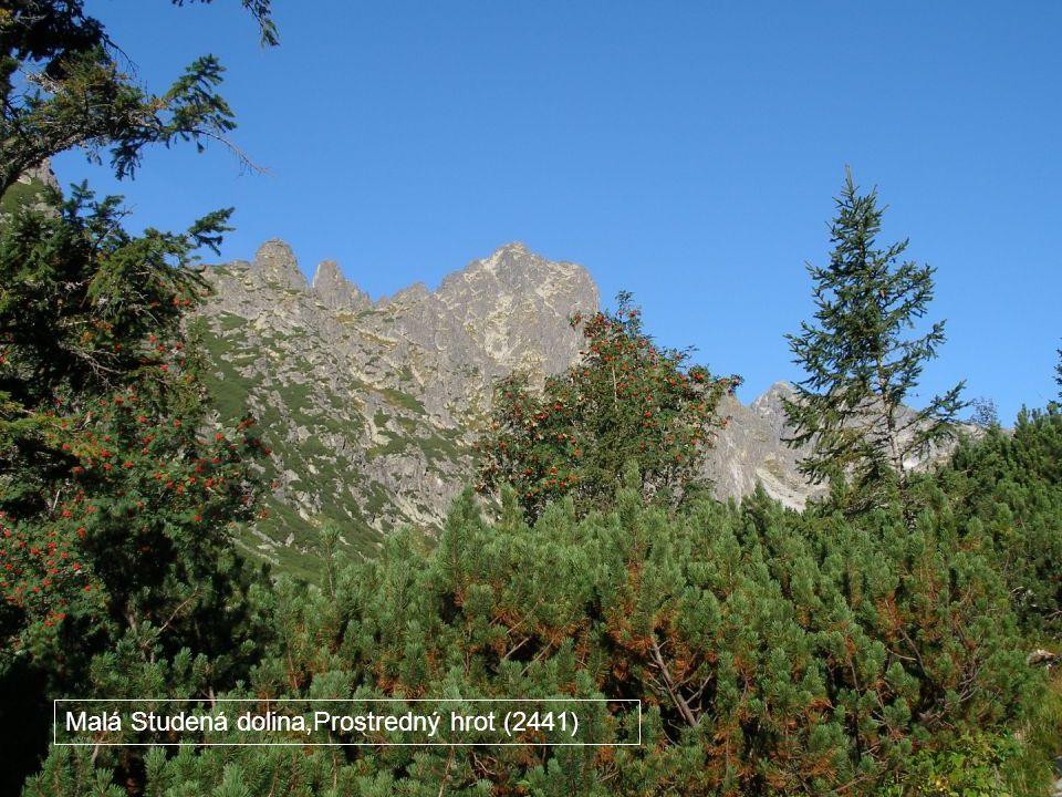 Malá Studená dolina,Prostredný hrot (2441)