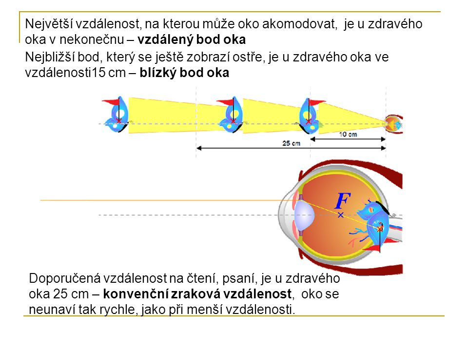 Největší vzdálenost, na kterou může oko akomodovat, je u zdravého oka v nekonečnu – vzdálený bod oka