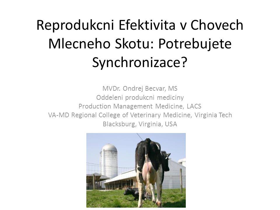 Reprodukcni Efektivita v Chovech Mlecneho Skotu: Potrebujete Synchronizace