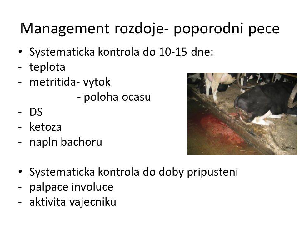 Management rozdoje- poporodni pece