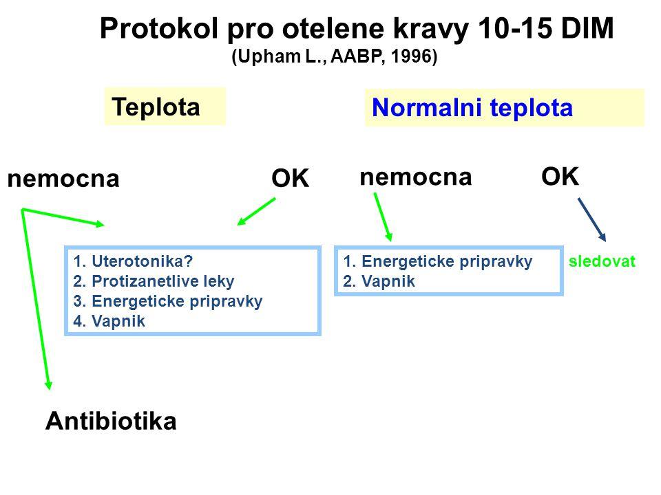 Protokol pro otelene kravy 10-15 DIM
