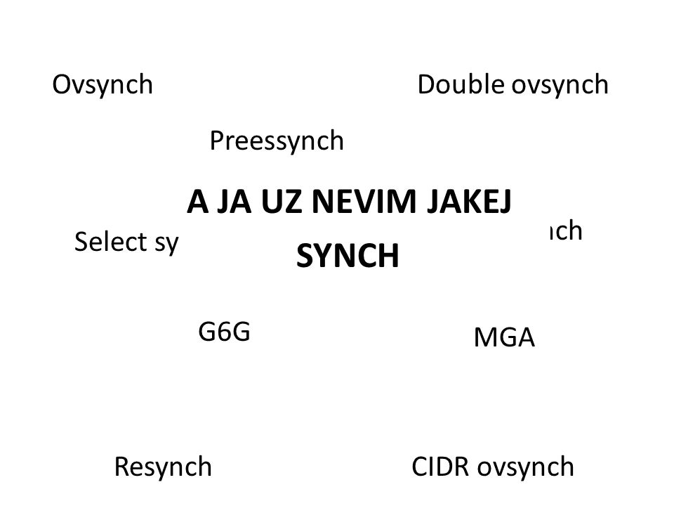 A JA UZ NEVIM JAKEJ SYNCH Ovsynch Double ovsynch Preessynch Co-synch