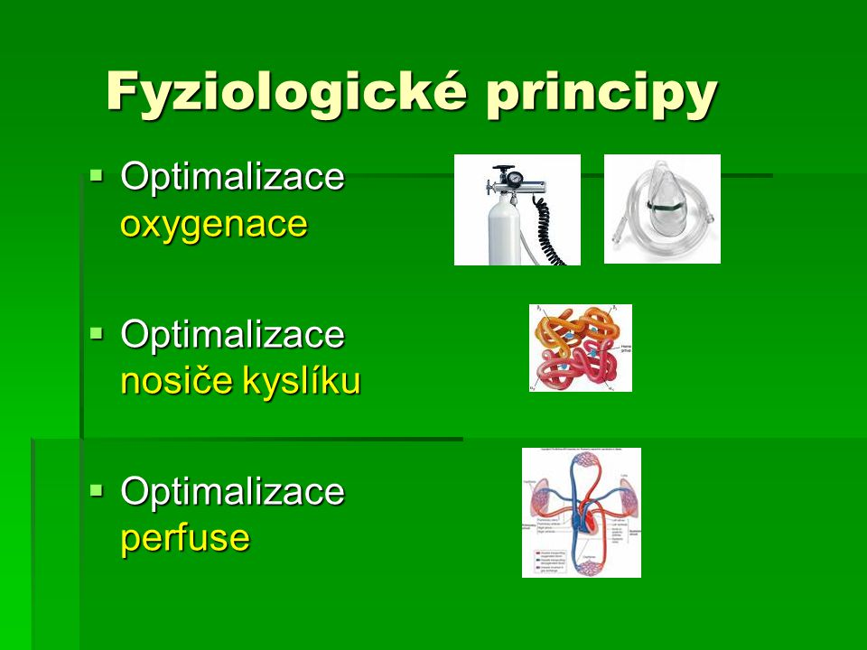 Fyziologické principy