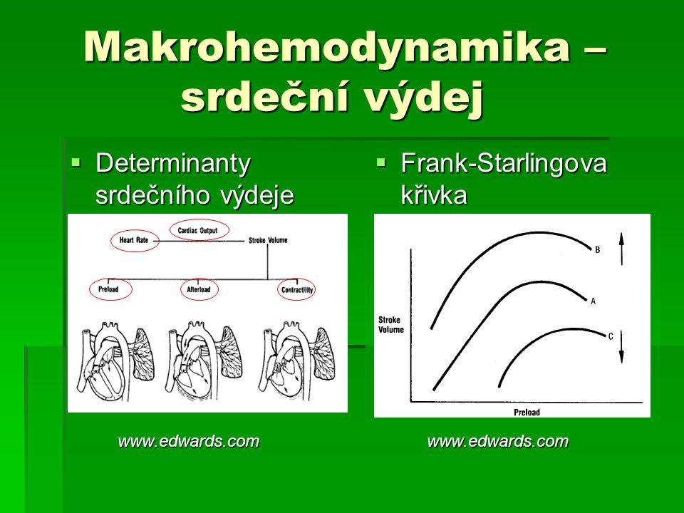 Makrohemodynamika – srdeční výdej