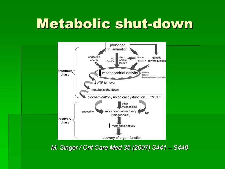 Metabolic shut-down M. Singer / Crit Care Med 35 (2007) S441 – S448