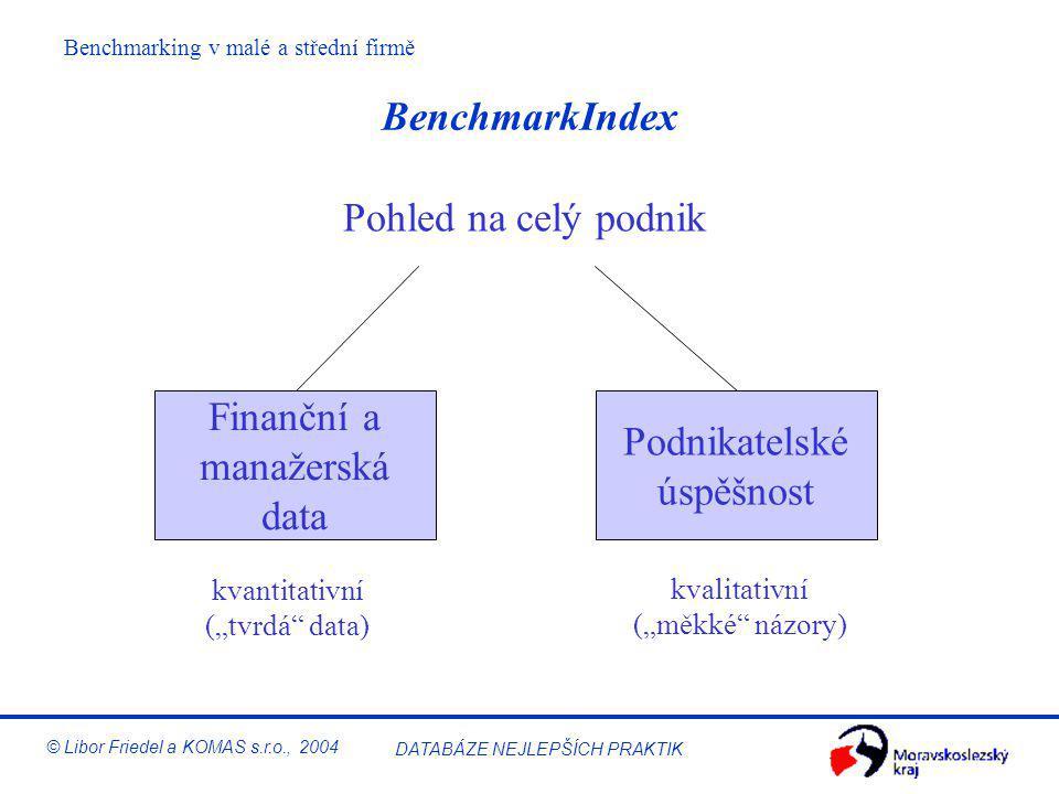 BenchmarkIndex Pohled na celý podnik Finanční a Podnikatelské
