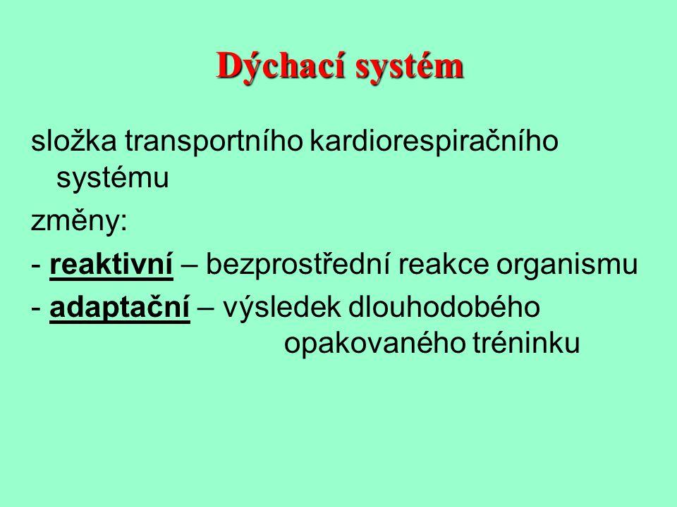 Dýchací systém složka transportního kardiorespiračního systému změny: