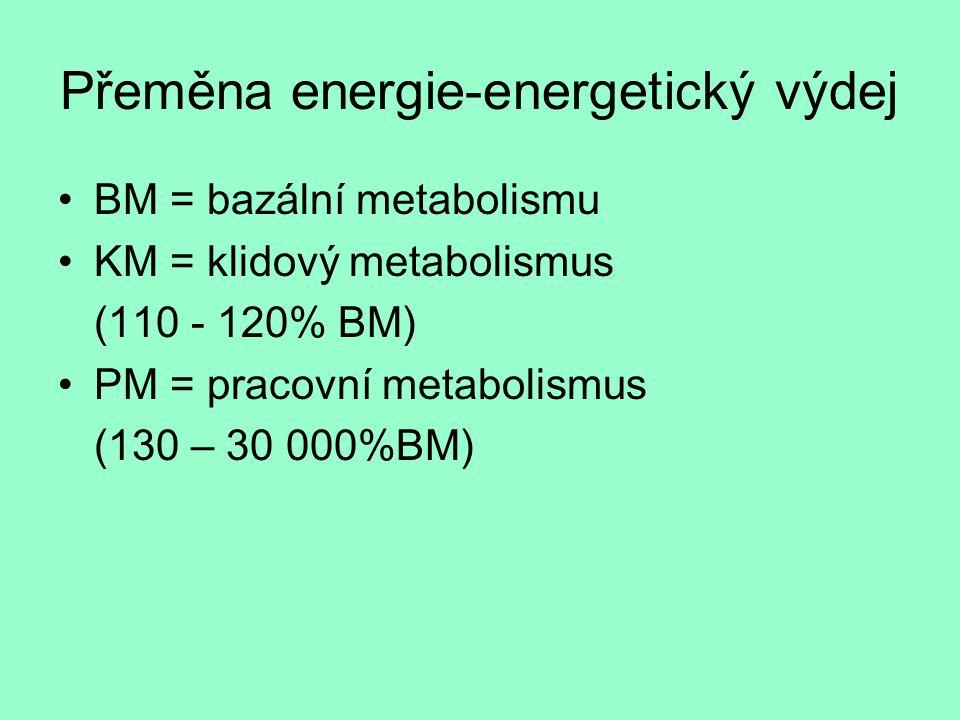 Přeměna energie-energetický výdej