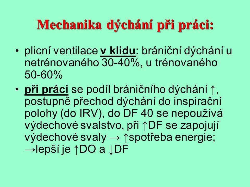 Mechanika dýchání při práci: