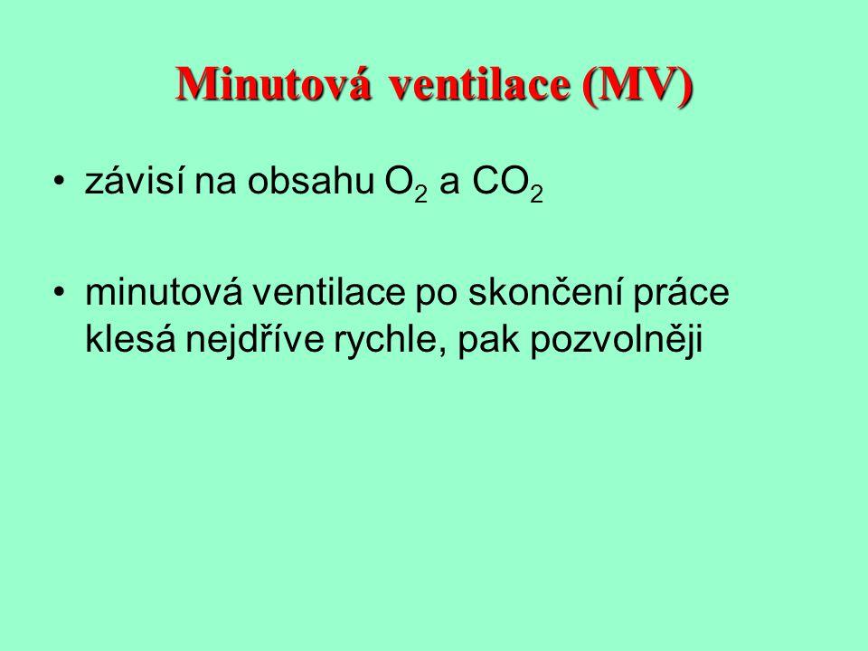 Minutová ventilace (MV)