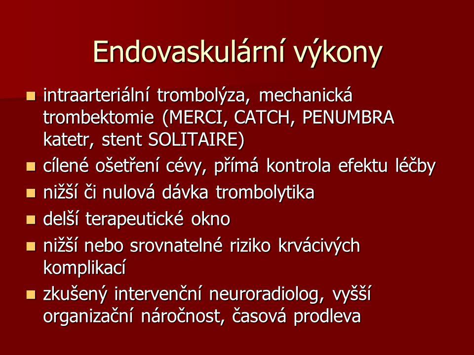 Endovaskulární výkony
