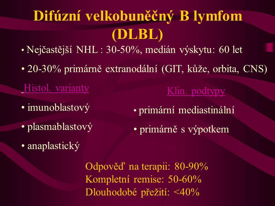 Difúzní velkobuněčný B lymfom (DLBL)