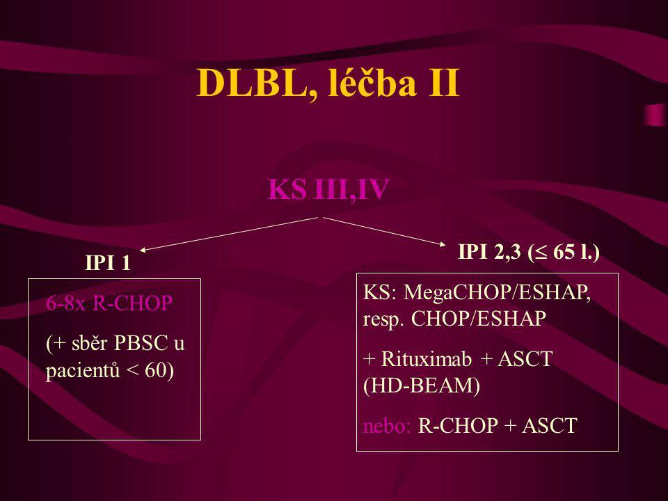 DLBL, léčba II KS III,IV IPI 2,3 ( 65 l.) IPI 1