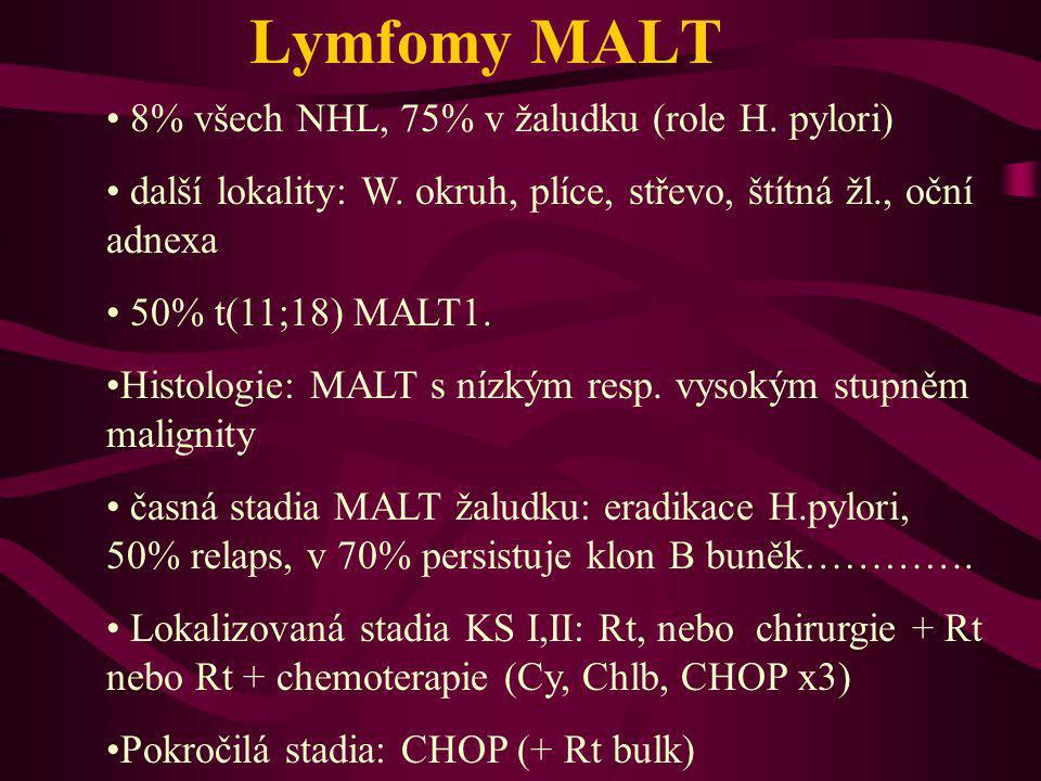 Lymfomy MALT 8% všech NHL, 75% v žaludku (role H. pylori)