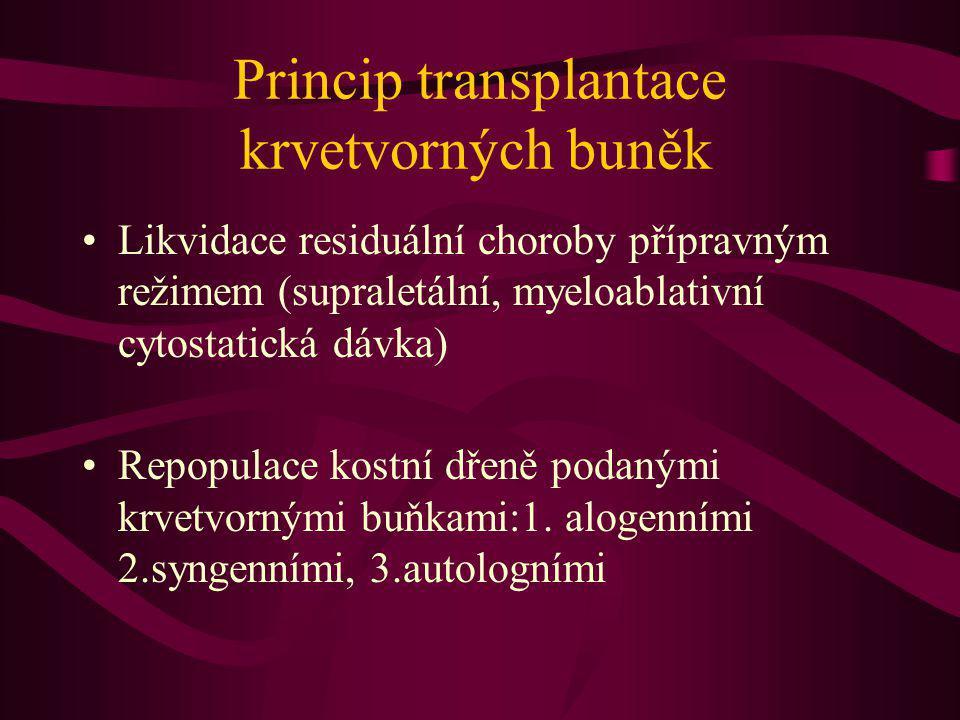 Princip transplantace krvetvorných buněk