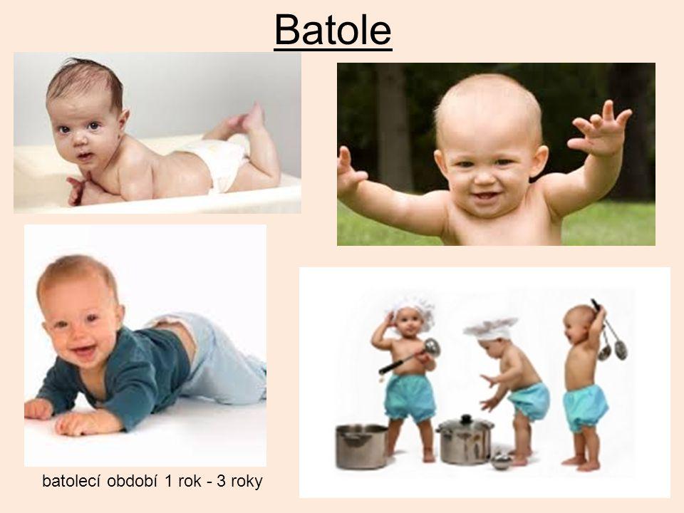 Batole batolecí období 1 rok - 3 roky