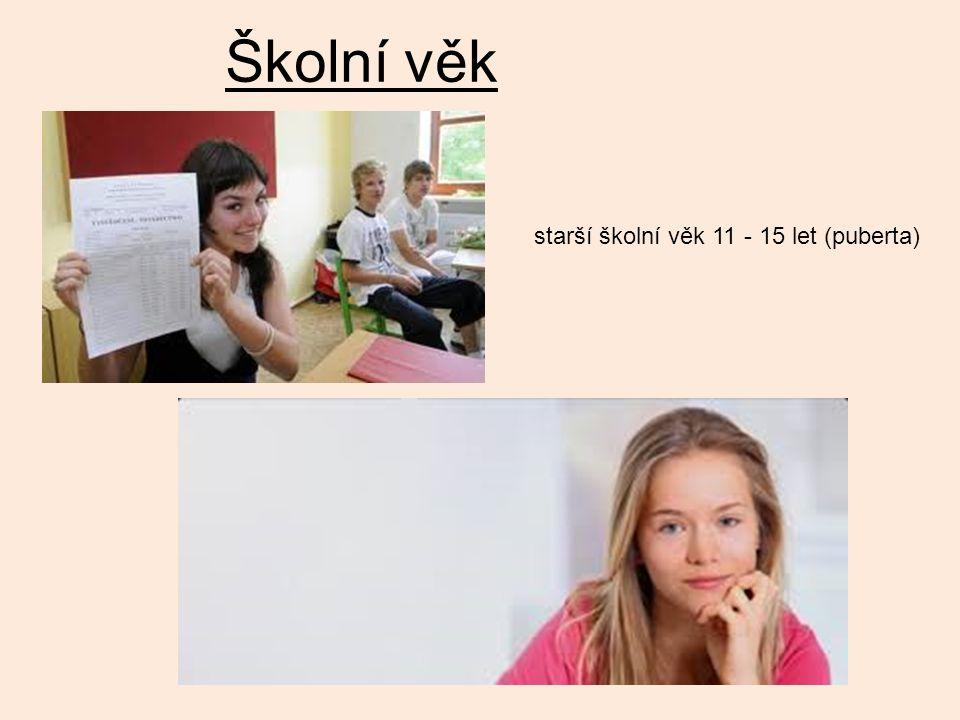Školní věk starší školní věk 11 - 15 let (puberta)