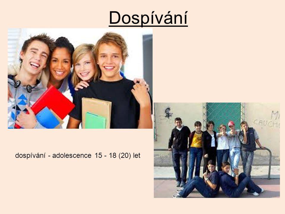 Dospívání dospívání - adolescence 15 - 18 (20) let