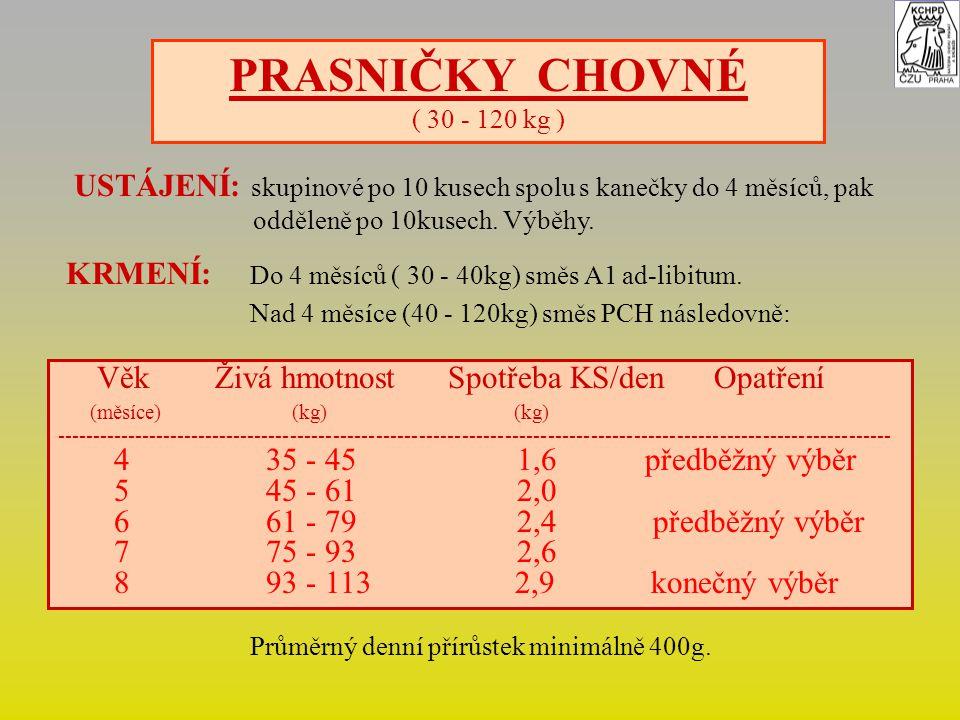 PRASNIČKY CHOVNÉ ( 30 - 120 kg ) USTÁJENÍ: skupinové po 10 kusech spolu s kanečky do 4 měsíců, pak.