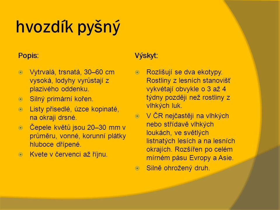 hvozdík pyšný Popis: Výskyt:
