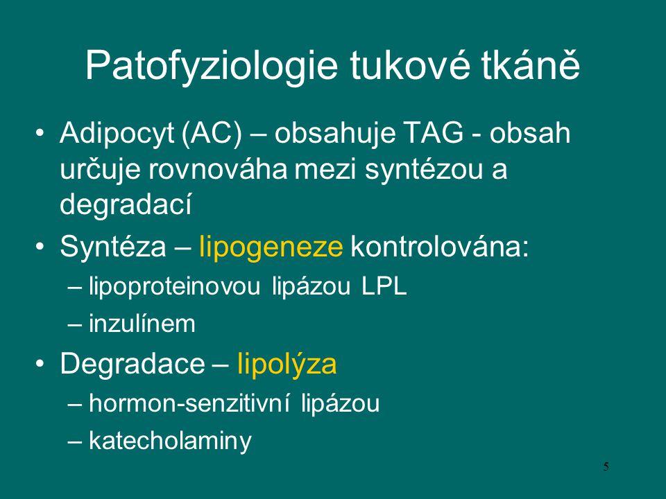 Patofyziologie tukové tkáně