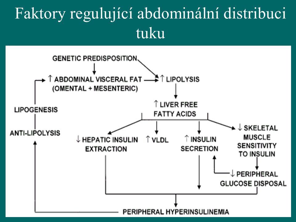 Faktory regulující abdominální distribuci tuku
